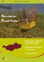 EDITO Bon envol au Bruant Wallon - Natagora