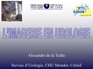 Imagerie en urologie: conduite à tenir devant une image kystique