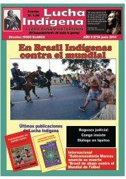 Lucha Indígena 94