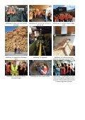 05.06.2013 Lindner-Traktoren & Binder-Holz - 2A - Page 4