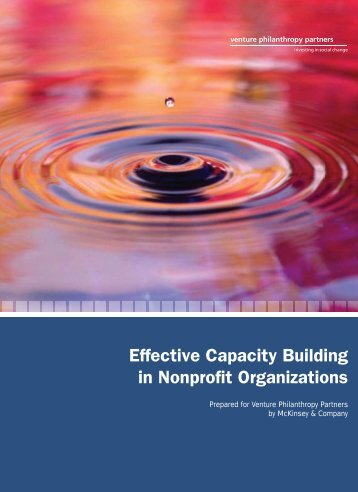 Effective Capacity Building in Nonprofit Organizations - Venture ...