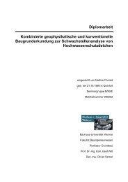 Diplomarbeit Kombinierte geophysikalische und konventionelle ...