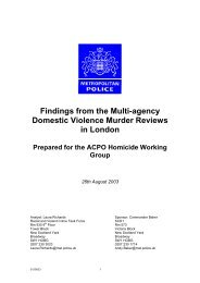 Findings from the Domestic Homicide Reviews
