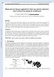Dispersion de charges agglomérées dans une matrice polymère ...