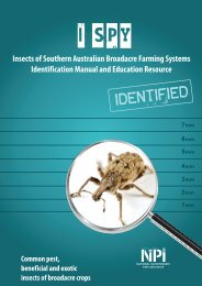Insects of Southern Australian Broadacre Farming Systems - Grains ...
