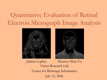 Quantitative Evaluation of Retinal Electron Micrograph Image Analysis