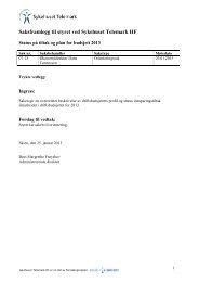 Sak 07/13 Status innsparingstiltak og plan for budsjett 2013