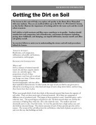 Getting the Dirt on Soil - Bronx River Alliance