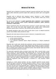 REGULAČNÍ PLÁN - Ústav územního rozvoje