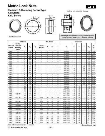 Metric Lock Nuts - PT International Corp