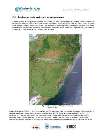 1.1.1. Las lagunas costeras del cono sureste americano - WASA-GN