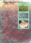 kokaini - Page 2
