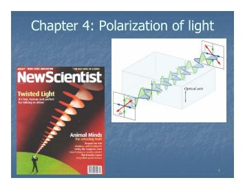 Optically polarized atoms_ch_4.pdf