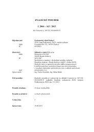 ZNALECKÝ POSUDEK č. 2066 – 163 / 2013 - e-aukce