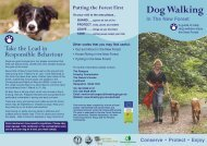 New Forest Dog Walking Code - Forestry Commission