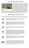 Boletín Noticioso 16 - Spor Car - Page 3