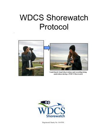 Shorewatch Protocol - Whale and Dolphin Conservation Society