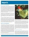 groupe d'initiative commune des éleveurs de la - Equator Initiative - Page 6