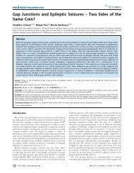 Gap Junctions and Epileptic Seizures - University of California ...
