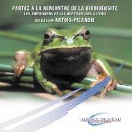 Les amphibiens et les reptiles liés à l'eau du bassin Artois Picardie