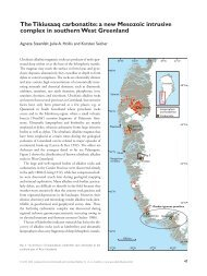Geological Survey of Denmark and Greenland. Bulletin 10 ... - Geus