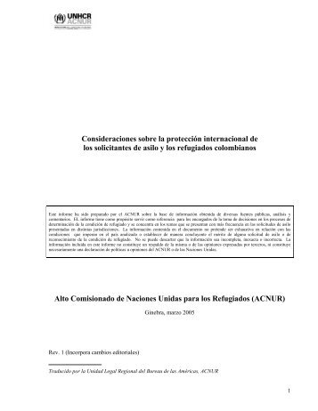 Consideraciones sobre la protección internacional de los ... - Acnur
