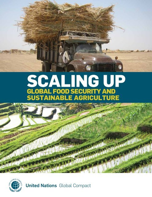 Scaling Up Global Food Security and Sustainable ... - Circle of Blue