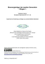 Bioenergieträger der zweiten Generation ... - Projekt Energiebildung