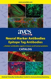 to download our Catalog (PDF File - Aves Labs