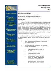 E-3 Custodial Interference and Child Abuse