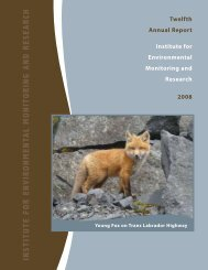 2008 Annual Report - Institute for Environmental Monitoring and ...