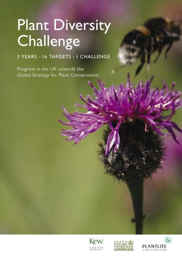 Plant Diversity Challenge: 3 years - 16 targets - Plantlife