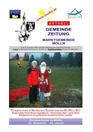 Datei herunterladen - .PDF - Molln