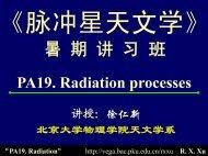 脉冲星辐射可能的物理过程PA 19