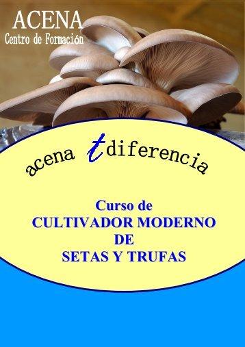 Curso de CULTIVADOR MODERNO DE SETAS Y TRUFAS