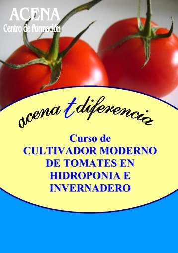 Curso de CULTIVADOR MODERNO DE TOMATES EN HIDROPONIA E INVERNADERO