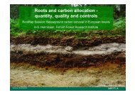 Roots and carbon allocation - quantity, quality and controls