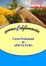 Curso Profesional de APICULTURA