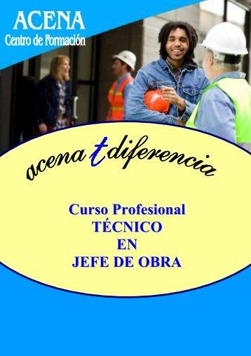Curso Profesional TÉCNICO EN JEFE DE OBRA