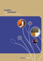 footwear Leather - Invest in Tunisia, The Foreign Investment ...