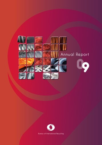 Annual Report - BIR