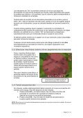 Características de Sacred v.1.7 - FX Interactive - Page 3