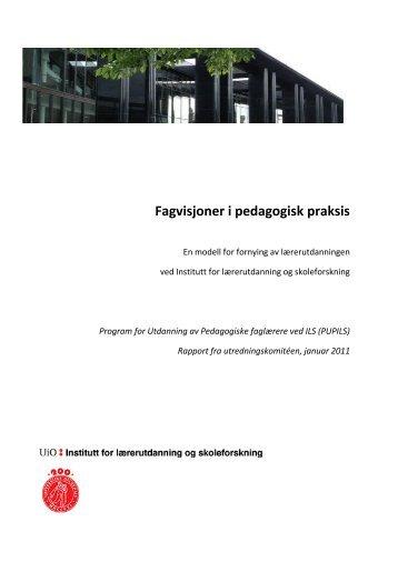 PUPILS-rapport - Det utdanningsvitenskapelige fakultet ...