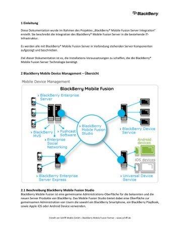 BlackBerry Mobile Fusion Checkliste - wireless & mobile