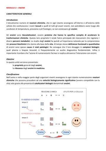 MODULO 2 – ENZIMI CARATTERISTICHE ... - life and fitness