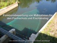 """Bewertung eines Standortes - Forum """"Fischschutz und Fischabstieg"""""""