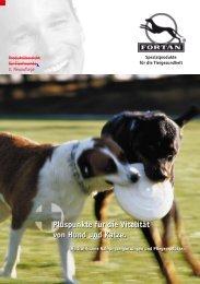 Fortan Katalog 2005