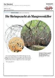 Der Standard, Mangrovenwälder – Raubbau und ... - Yuu'n Mee