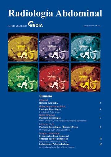 Volumen 12; Número 1, Mayo 2013 - SEDIA