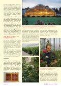 Herbst-Damaszenerrosen - RDB Verlag - Seite 3